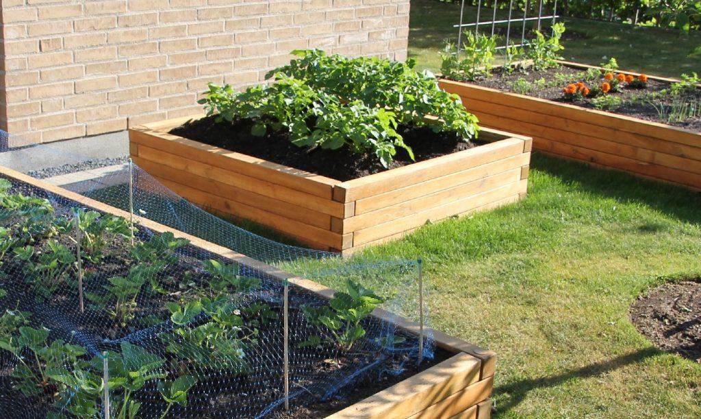 firkantet Højbed med planter i