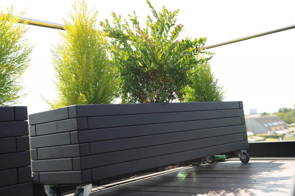 Hjalmar sort plantekasse på hjul set i frøperspektiv