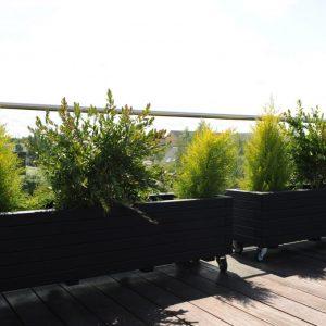 2 sorte Hjalmar plantekasser på hjul stående på terrasse
